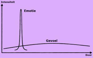 verschil tussen gevoel en emotie